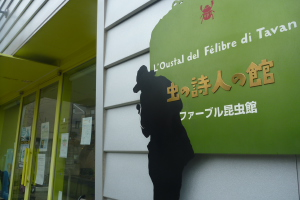 2012_01_21 14_29_15.jpg