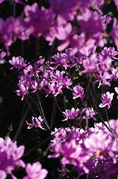 2011_04_16 16_03_57.jpg