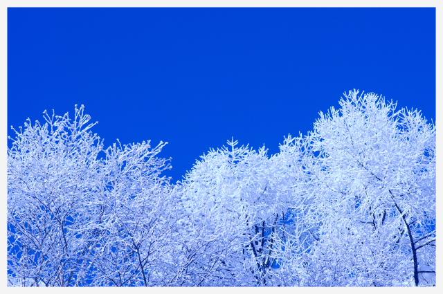 2011_12_24 08_39_03.jpg