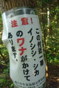 2012_11_03 13_28_16.jpg