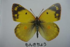 2013_04_14 14_16_17.jpg