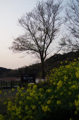 2014_04_05 17_14_53.jpg